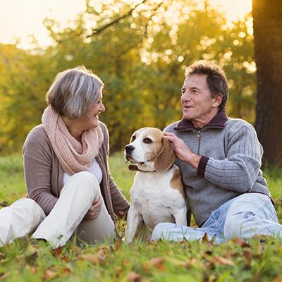 Elderly couple petting cute beagle in a peaceful park