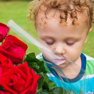 Child sniffing bouquet of bright red roses